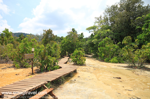 สระมรกต กระบี่ เป็นสระน้ำธรรมชาติที่มีความสวยงาม มีลักษณะเป็นบ่อหินปูน น้ำใสสีเขียวมรกต สามารถลงเล่นน้ำได้ ท่ามกลางบรรยากาศป่าเขา
