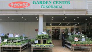 ร้านขายต้นไม้ GARDEN CENTER Yokohama