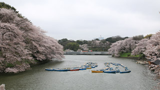 Kitanomaru Park – Chidorigafuchi