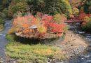 ชมใบไม้เปลี่ยนสี Nakano Momiji Yama ปราสาท Hirosaki